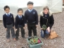 Planting and looking after the environment